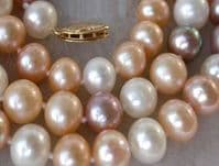 Magnificent, large  AAA grade multicolour pearls with traditional 14k gold clasp